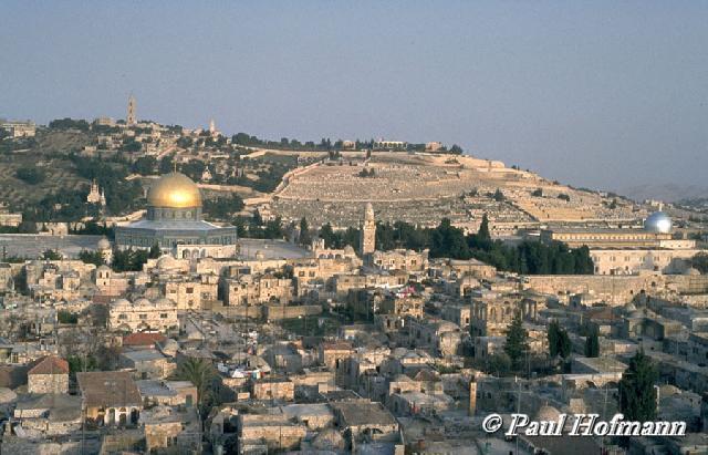 بالصور القدس العربي صور 10346 5