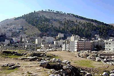 بالصور القدس العربي صور 10346 6