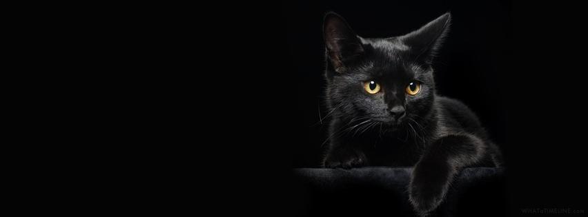 بالصور صورة غلاف سوداء 13229 5