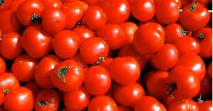 صورة تفسير حلم الطماطم للحامل , عجيب هذا التفسير اول مره اسمع فيه