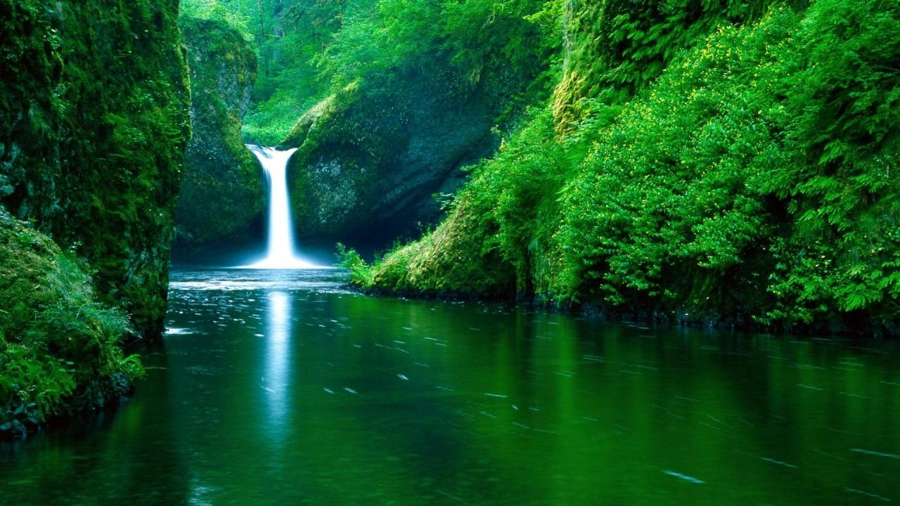 بالصور صور الطبيعية 14724 2
