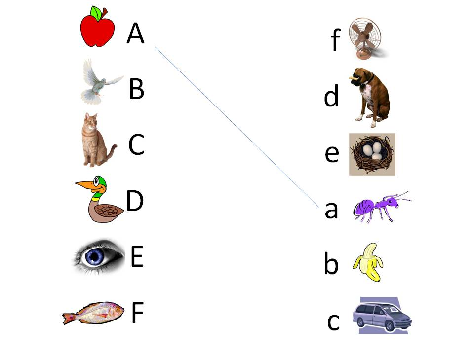 تحميل كتاب تعليم الارقام الانجليزية للاطفال pdf