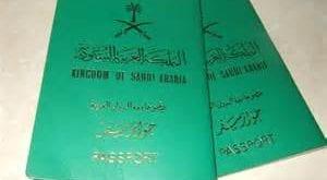 صور جواز السفر في المنام لابن سيرين