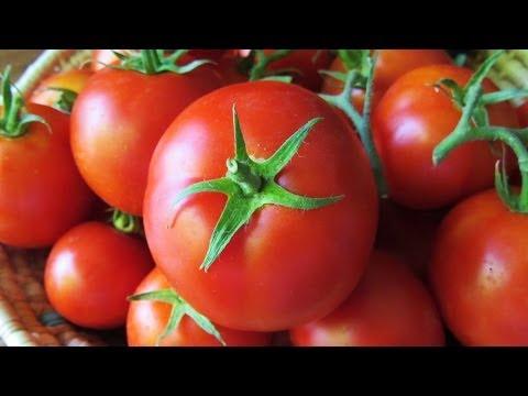 صوره فوائد الطماطم للجنين