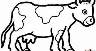 رسومات للحيوانات
