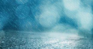 الشرب من ماء المطر في المنام