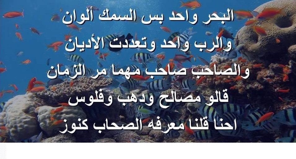 بالصور حكم ومواعظ اسلامية 3910
