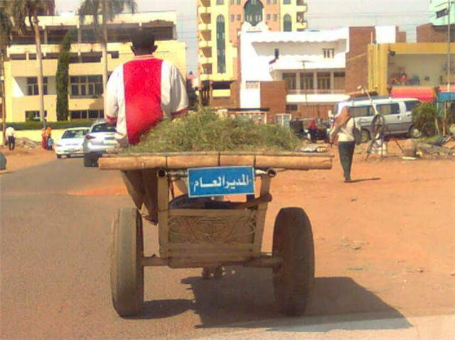 بالصور كلام سوداني مضحك , الضحكه من كلام جميل 7870