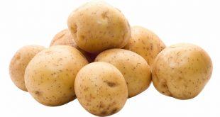 تفسير حلم البطاطس لابن سيرين
