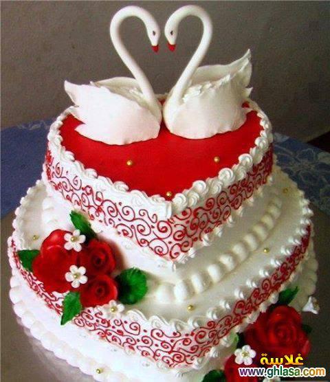 صورة اجمل كيكة عيد ميلاد