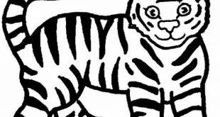 رسومات الحيوانات