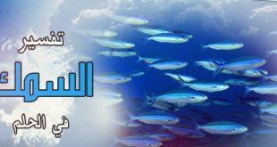 تفسير حلم السمك لابن سيرين
