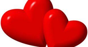 نبذة عن الحب