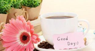 صور كلمات في الصباح للاصدقاء