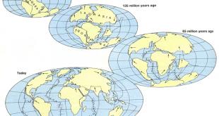 خريطة العالم قبل 50 مليون سنة