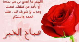 صباح الخير يالغالي صباح الورد والريحان