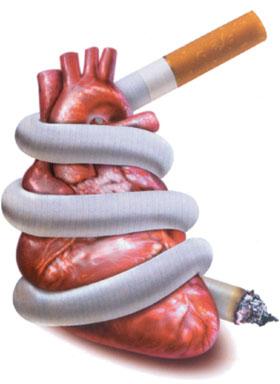 بحث حول التدخين بالصور