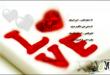 بالصور شعر للعشاق الحب 9728cbdaad18a964701d6c44f8cd9a88 110x75
