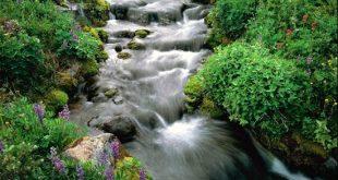 صور اجمل المناظر الطبيعية