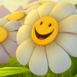 صباح الابتسامة