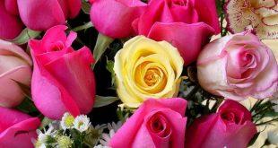 لغة الزهور