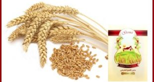 صور طريقة استعمال جنين القمح