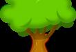 صوره احاديث نبوية عن الشجرة