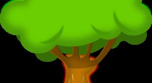 صور احاديث نبوية عن الشجرة