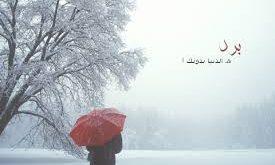 صوره كلمات عن الشتاء