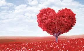 رسائل حب راس السنة الجديدة , احلى رسائل السنه الجديده عن الحب
