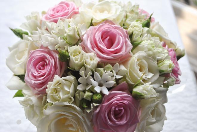 صوره صور الورود