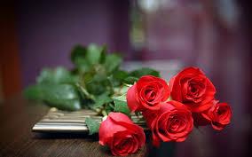 بالصور صور الورود 13772 3