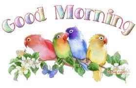 صور صور صباحية صور صباح , ارسلى لزميلتك صورة حلوة مكتوب فيها صباح الخير