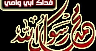 عبارات دفاع عن الرسول صلى الله عليه وسلم