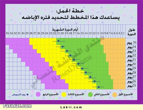 Aarda Info الصور والأفكار حول حاسبة الاباضة والحمل بولد