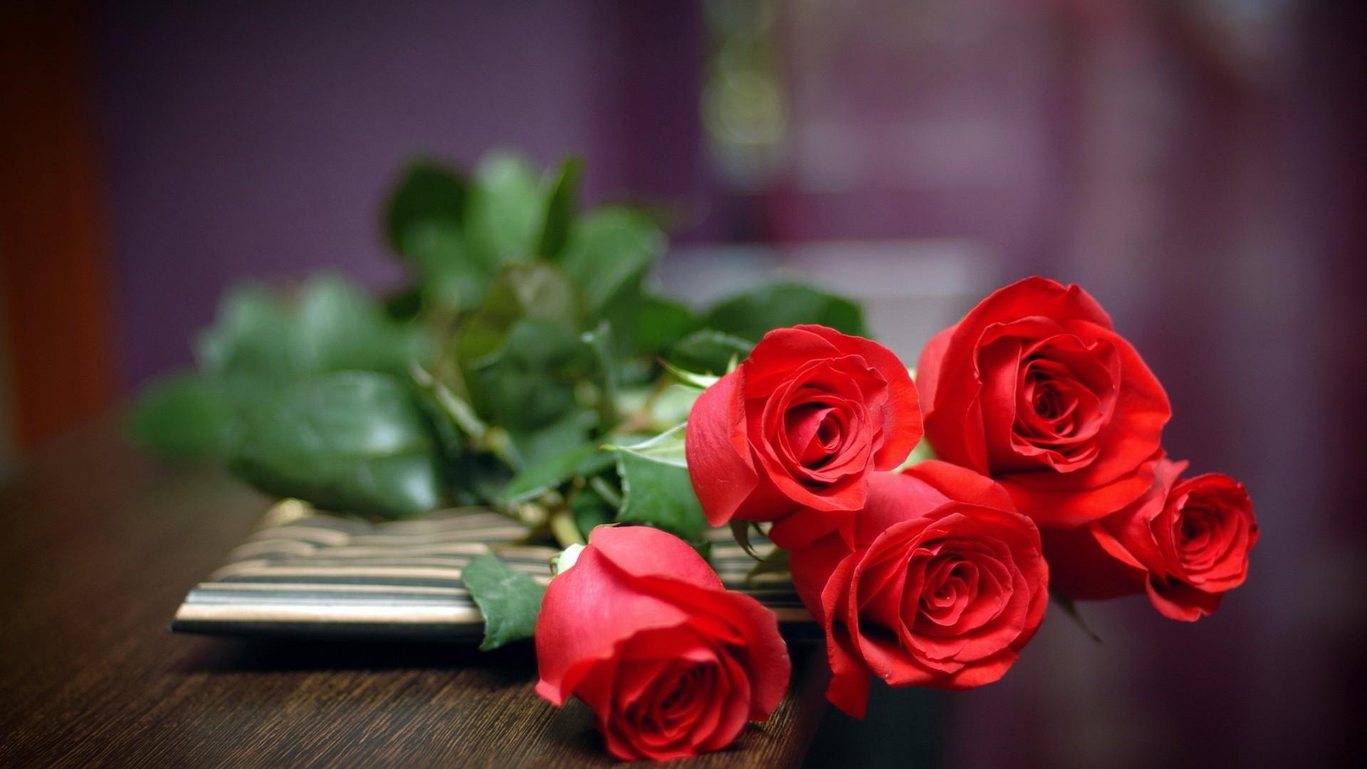 صور تفسير الاحلام الورد الاحمر , مبسوطه علشان حلمتى بورد تعرفى تفسيرة اى