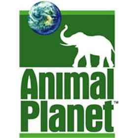 تردد قنوات الحيوانات