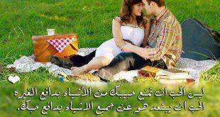 بالصور اجمل العبارات عن الحب 2ce6252fc7382f692ee0d3fa7a504035 310x165