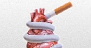 صوره اضرار التدخين