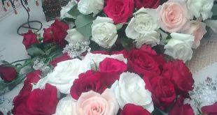 باقة زهور حلوه