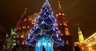 صوره صور شجرة اعياد الميلاد