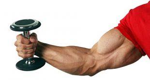 صور تقوية عضلات اليد