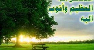 بالصور استغفر الله العظيم عدد 6ad6358732c56940b6c4160265396373 310x165