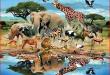 بالصور الحيوانات في المنام لابن سيرين 7e2a4c4ae38aed28ec74d71c7ead5f59 110x75