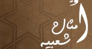 بالصور الامثال الشعبية الجزائرية المضحكة 7e2aa21ebc934a9871c34ac9418f7146 310x165