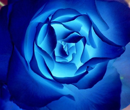 صورة حلم اللون الازرق , حلمتى باللون الازرق وعايزة تعرفى معناة اى هعرفك