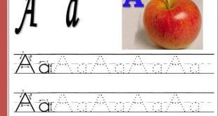 صوره تعلم الانجليزية للمبتدئين pdf