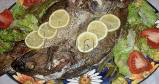 صوره صور اطباق اسماك