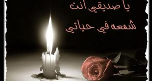 بالصور اهداء لصديقتي 9976d8e344cf5c6898b00fba0ffffa89 310x165