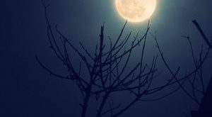 صورة ماذا يعني لك الليل